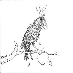 jake-crow